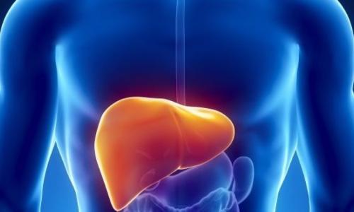 Chất bổ sung dinh dưỡng nguy hại cho gan