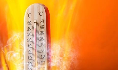 Trời nóng ăn gì?