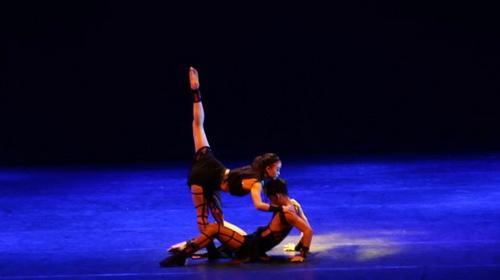 Về đâu những tài năng múa?