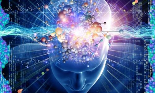 """4 cách sống hiện đại làm """"biến đổi"""" bộ não con người"""