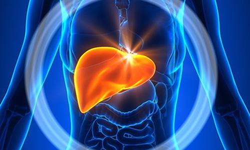 5 điều kinh ngạc về lá gan của bạn