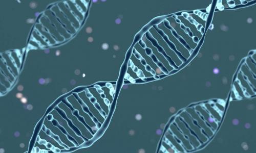 Người có khả năng kỳ lạ do lỗi... gene
