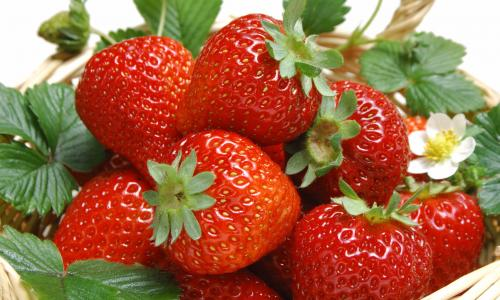 Thực phẩm bổ sung thiếu hụt vitamin C