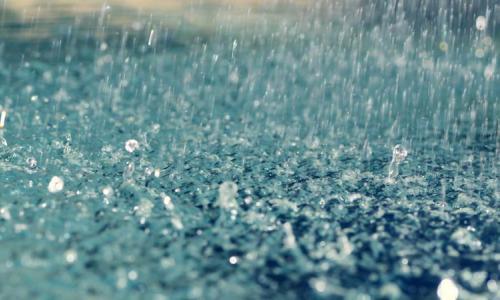 Đối phó với các bệnh da vào mùa mưa