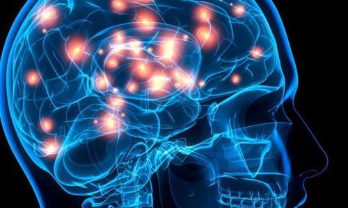 Một số thói quen làm giảm trí thông minh