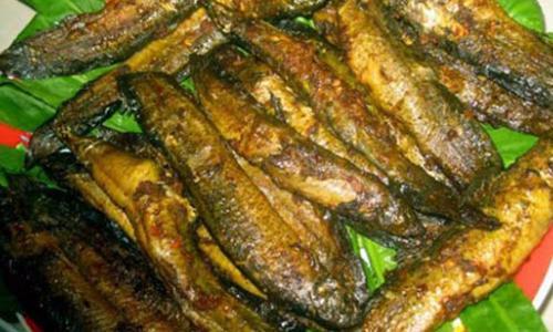 Cá chạch bồi bổ sức khỏe, tăng ham muốn