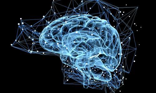 Thiếu máu não và sự nguy hiểm