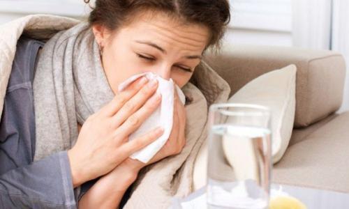 Bài thuốc nam trị cảm cúm