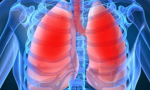 Thở bằng miệng làm gia tăng bệnh hô hấp
