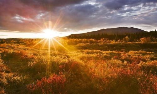Nguy cơ viêm thanh quản cấp do nắng nóng