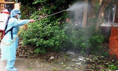 Phun thuốc diệt muỗi có gây độc?