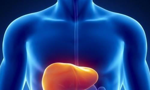 Mở ống mật chủ lấy sỏi cho thai phụ 20 tuần bị sỏi mật, xơ gan, viêm gan B, thai vẫn ổn định