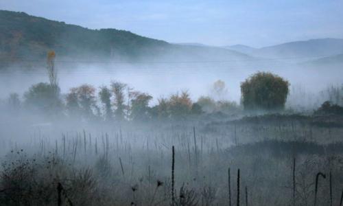 Sương mù có ảnh hưởng đến sức khỏe?