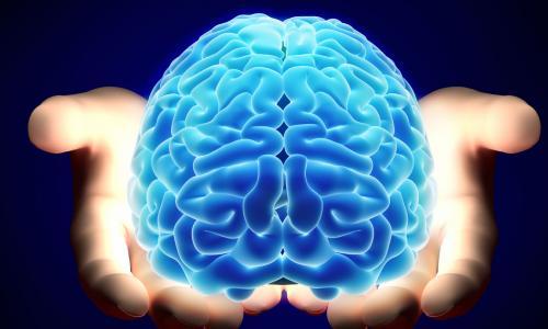 Các dưỡng chất giúp bộ não khỏe mạnh