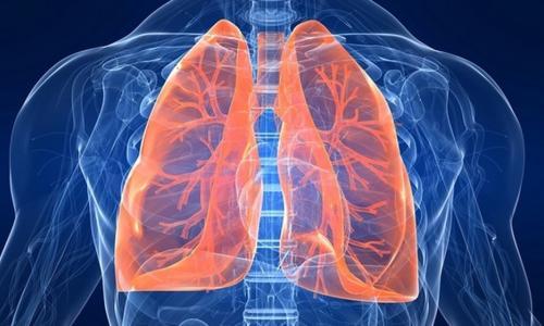 5 thực phẩm giải độc và làm sạch phổi giúp phòng tránh ung thư