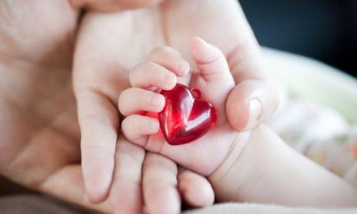 Hành trình hồi sinh gian nan của bé gái non tháng sau phẫu thuật 4 tật tim