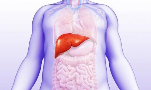 Thuốc ức chế bơm proton thúc đẩy bệnh gan tiến triển