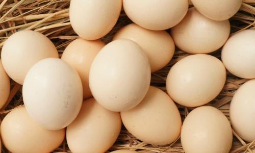 Trứng gà hai lòng đỏ giá trị dinh dưỡng cao