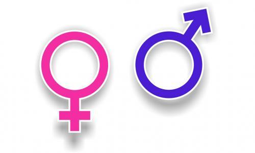 Khác biệt thú vị giữa nam và nữ