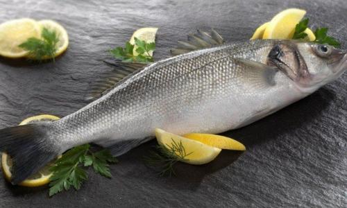 Cá chẽm - Vị thuốc quý cho thai phụ
