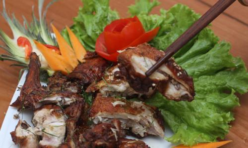Thịt thỏ - Ích khí kiện tỳ