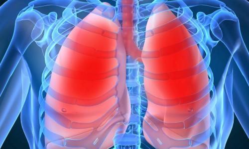 Bệnh hô hấp dễ tấn công trẻ trong tiết thu