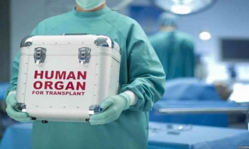 GS. Trịnh Hồng Sơn tiếp tục giữ chức Giám đốc Trung tâm điều phối quốc gia về ghép bộ phận cơ thể người