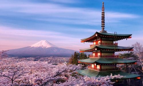 Thủ tướng Shinzo Abe tranh cử LDP: Đưa Nhật Bản tiến bước