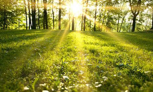 10 bài tập buổi sáng cho cả ngày đầy năng lượng