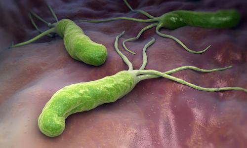 Chọn kháng sinh diệt vi khuẩn H.Pylori hiệu quả