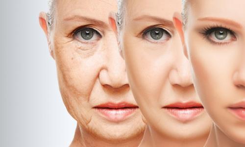 Rau quả ngăn ngừa lão hóa