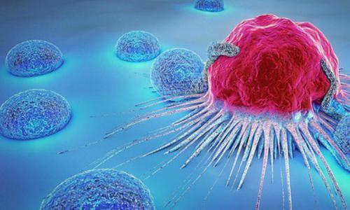 Tế bào ung thư sợ nhất thứ gì?