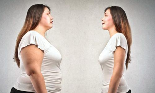 Cách nào để cơ thể béo lên?