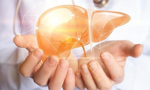 Thuốc hại gan và giải độc gan?
