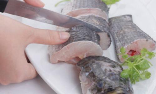 Cá lóc, thực phẩm vị thuốc