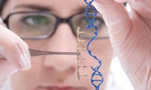Người đầu tiên trên thế giới chỉnh sửa gen để 'cải lão hoàn đồng'