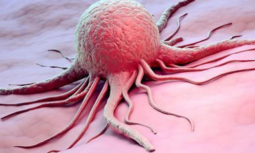 Y học cổ truyền có chữa được bệnh ung thư không?