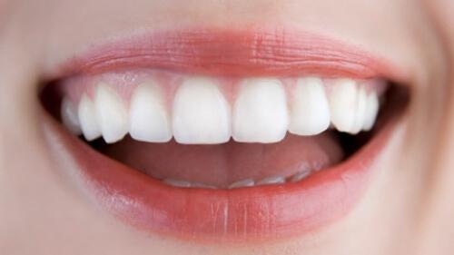 Chất ngọt từ cây stevia tốt cho răng