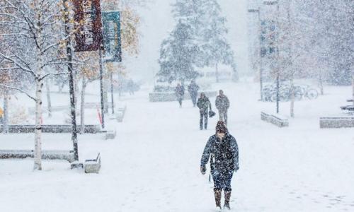 6 món ăn- bài thuốc bổ dưỡng cho mùa đông